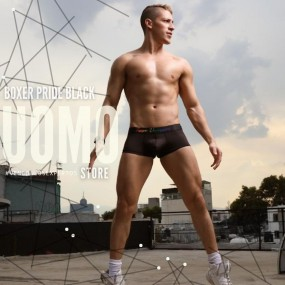 Boxer Pride Black