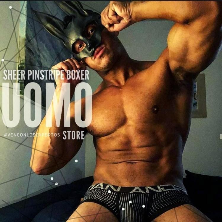 Sheer Pinstripe Boxer