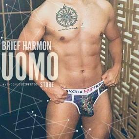 Brief Harmon