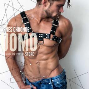 Arnes Chronos