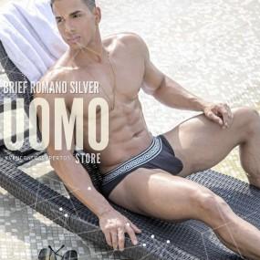 Brief Romano Silver